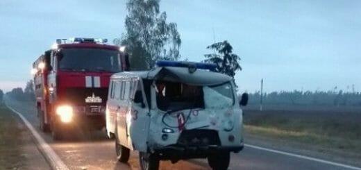 ВЧервенском районе автомобиль «скорой помощи» попал под лошадь