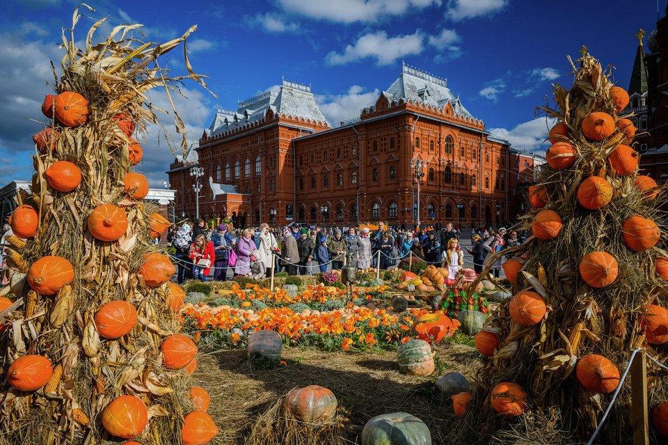 Самый уютный фестиваль года — «Золотая осень». 1