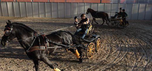 Эквирос колесница