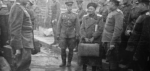 Товарищ походный атаман казачьего корпуса СС